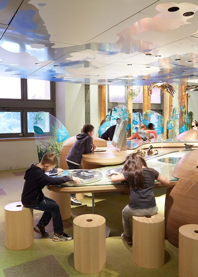 12 Galerie des enfants – muséum national d'histoire naturelle