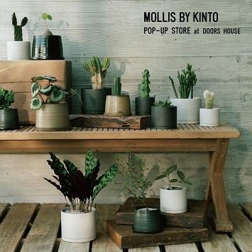 「MOLLIS BY KINTO」のポップアップストアが〈DOORS HOUSE〉にて開催!