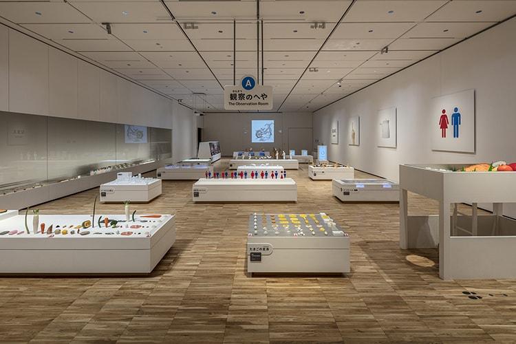 「デザインあ展 in TOKYO」観察のへや