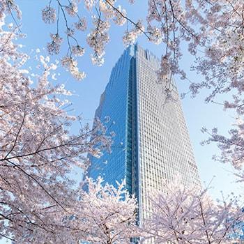 約150本の桜が春を祝福「MIDTOWN BLOSSOM 2019(ミッドタウン・ブロッサム)」