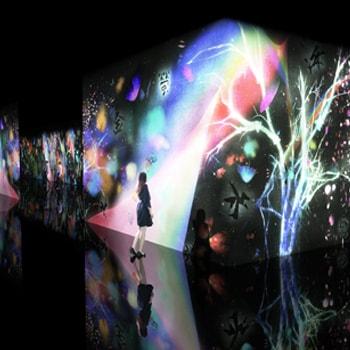 「チームラボ 世界は暗闇からはじまるが、それでもやさしくうつくしい」を姫路市立美術館で開催