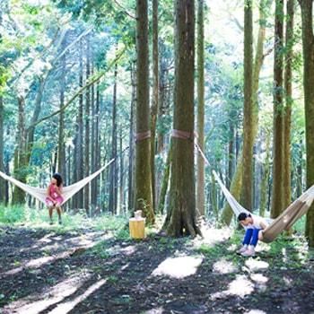 〈ポーラ美術館〉でアウトドアイベント「FOREST MUSEUM 2019」を開催、美術館のある森で宿泊キャンプを体験