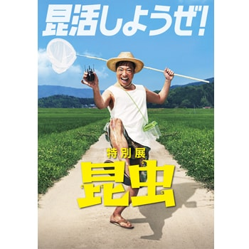 関西エリア初登場!〈大阪市立自然史博物館〉で特別展「昆虫」を開催