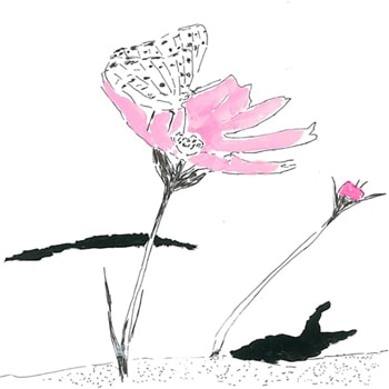 〈BOOK AND SONS〉でイラストレーター大神慶子&吉田裕美の2人展「resonance」を開催