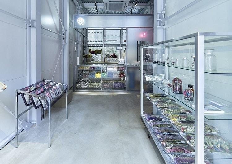 〈edenworks〉によるドライフラワーショップ「EW.Pharmacy」がオープン!