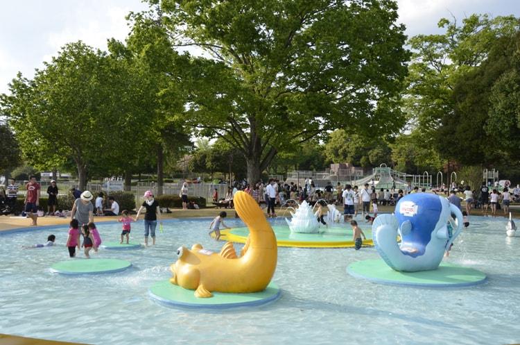 国営昭和記念公園の水遊び広場