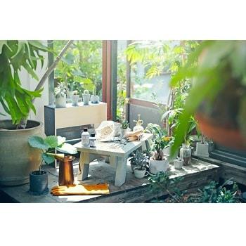 自然派塗料〈mizucolor〉ニューカラー登場&クリエイターコラボ家具販売開始!