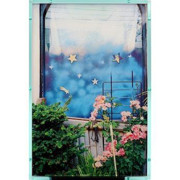 オンラインで〈銀座 蔦屋書店〉を楽しもう!川島小鳥写真展「おはようもしもしあいしてる」ほか公開中