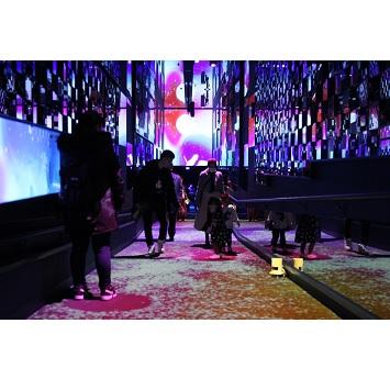 〈すみだ水族館〉で幻想的なお花見体験!体感型のインタラクティブアート「桜とクラゲ」開催