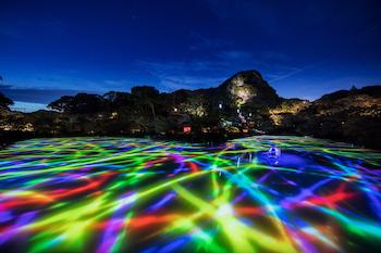美しい大自然とチームラボのデジタルアートが融合!心踊る幻想的な圧巻の空間に