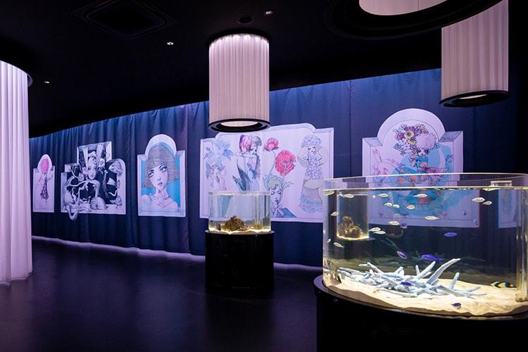 「ニフレル×装苑 生きものとアートにふれる展2018」画像