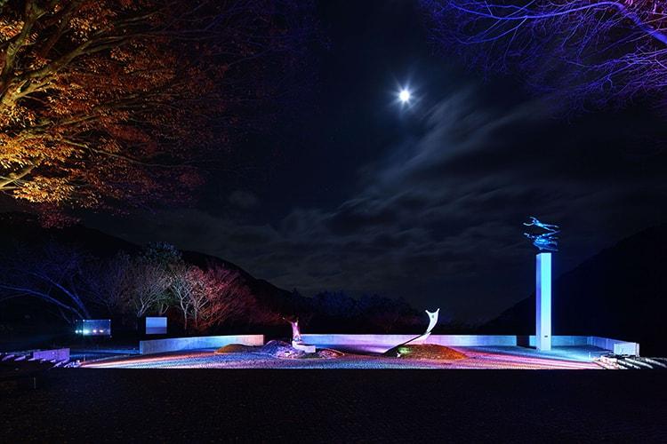 「箱根ナイトミュージアム」画像