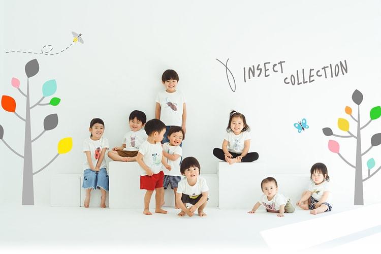 香川照之「Insect Collection」