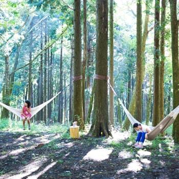 GW期間限定!「ポーラ美術館」の森の遊歩道でハンモックを楽しめる特別イベントを開催