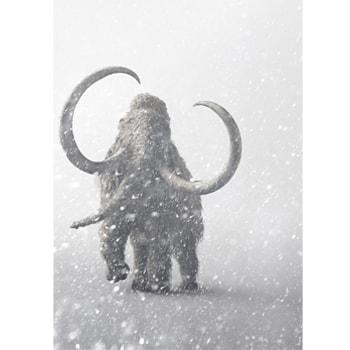 〈日本科学未来館〉で企画展「マンモス展」を開催、貴重な冷凍マンモスの標本を展示