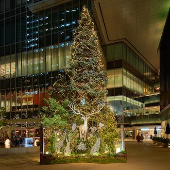 ファミリーで楽しむツリーアート。東京ガーデンテラス紀尾井町に登場