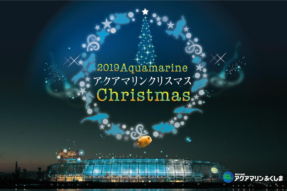 展望室がイルミネーションで彩られるキラキラマリンナイトが初登場!〈アクアマリンふくしま〉で「アクアマリンクリスマス」開催
