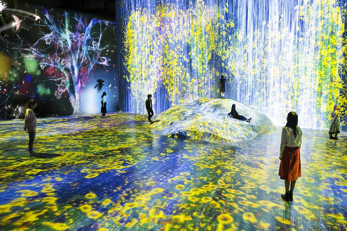森ビルデジタルアートミュージアム:エプソン チームラボボーダレス