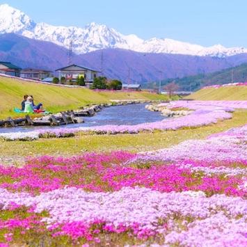 ファミリーフレンドリーな「ANA ホリデイ・インリゾート信濃大町くろよん」で、春旅を満喫!