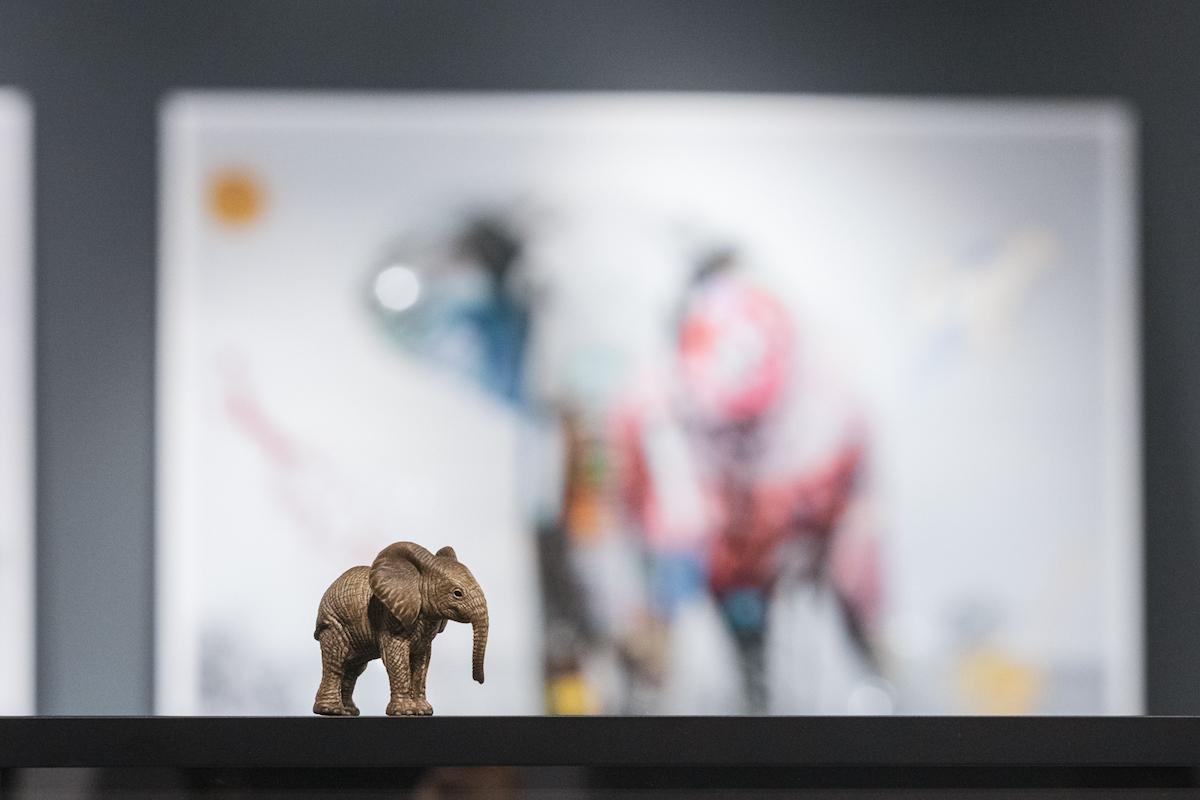 アート写真とアニマルフィギュアを一緒に飾って、自宅でサファリ気分を味わおう!コラボレーション展示「YELLOWKORNER♡Schleich For Wild Life-Virtual Safari-」