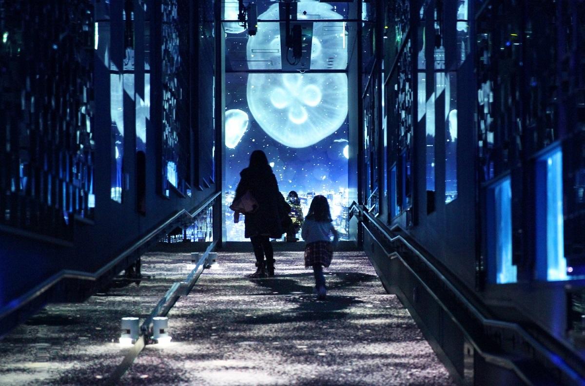 〈すみだ水族館〉体感型のインタラクティブアート「雪とクラゲ」を開催!