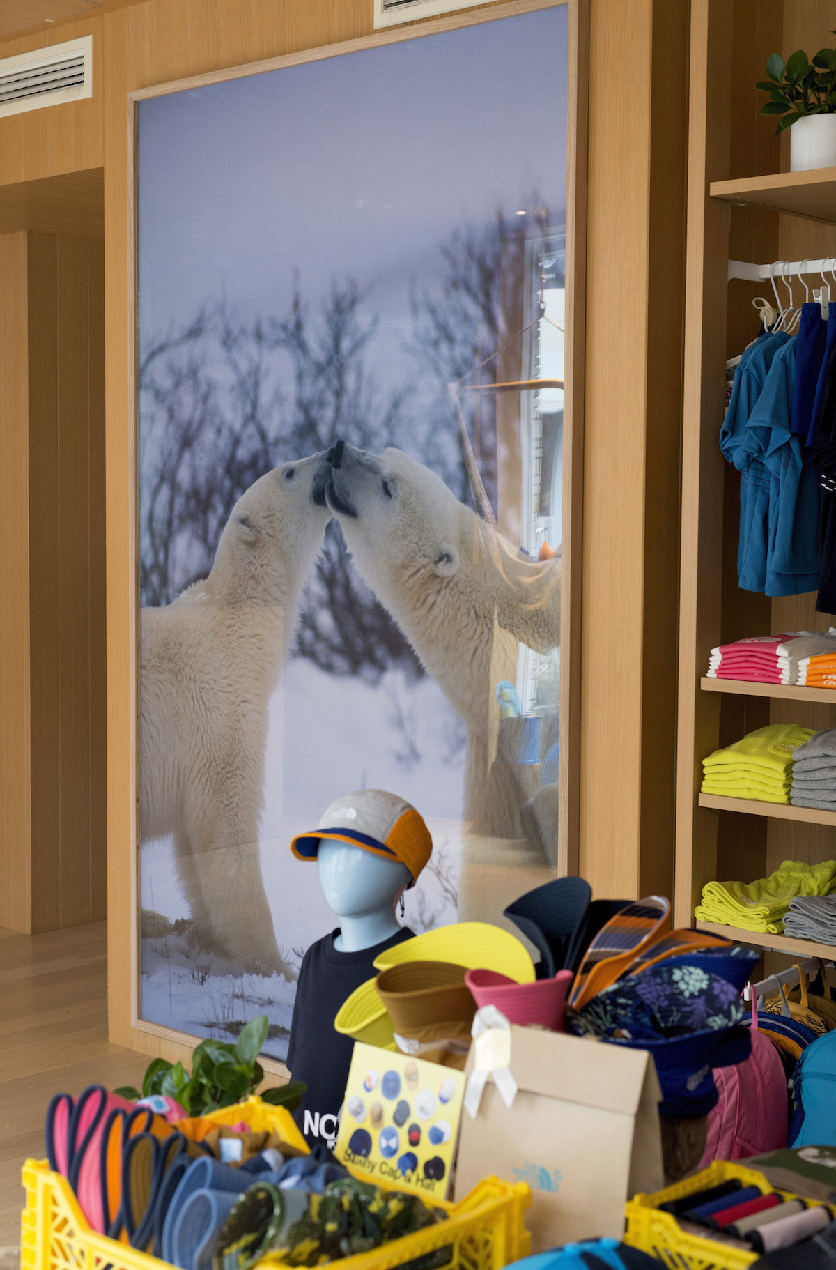THE NORTH FACE kidsでの展示風景