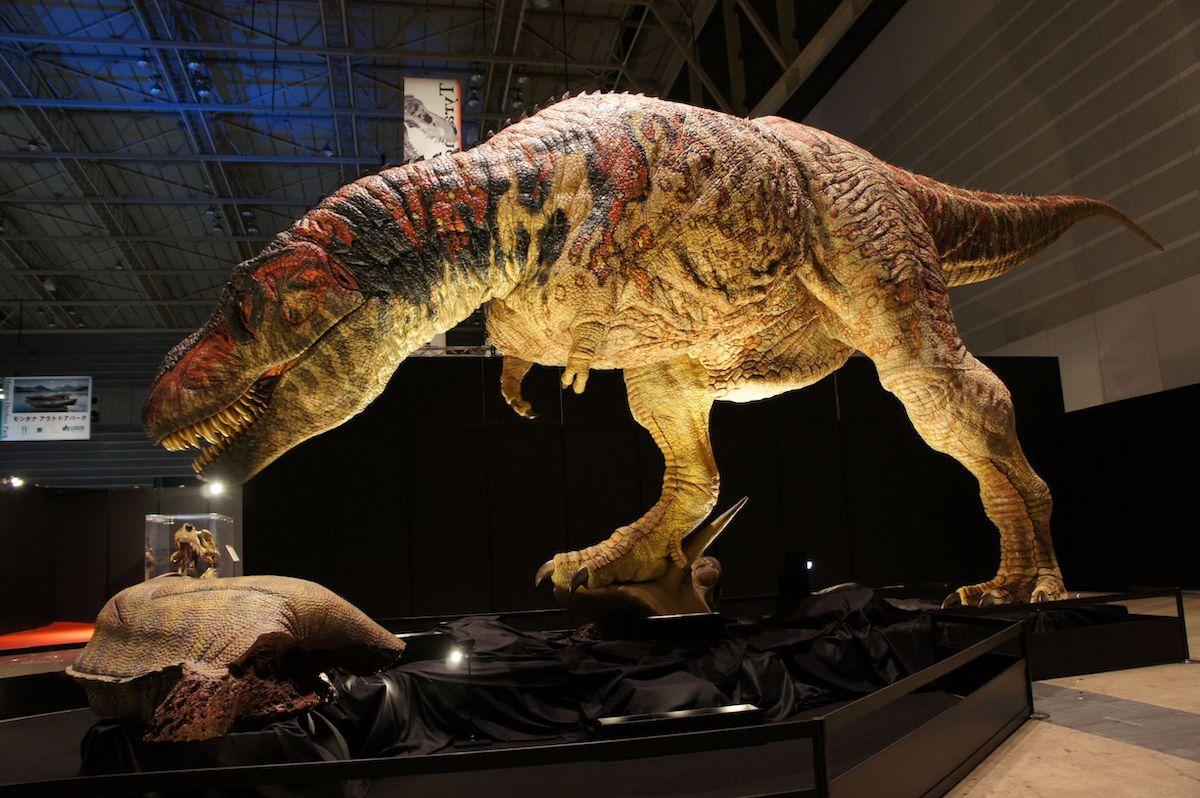 ティラノサウルス 実物大 ロボット ©ココロ