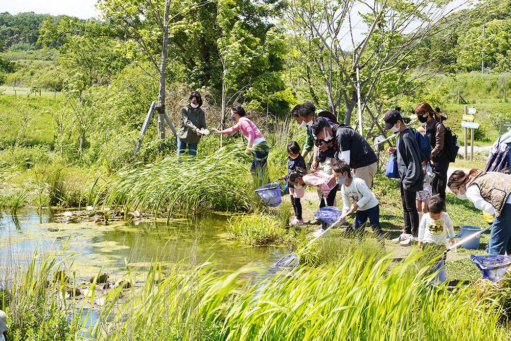水辺の生き物観察会は当日受付で、土日の14:00~14:30に開催。8組限定となり、参加費は500円(1組1~2名まで)、1,000円(1組3~4名まで)。